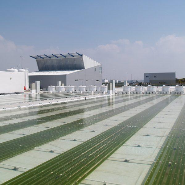 fitoplancton-facilities