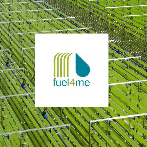 Fuel4me: creación de una cadena productiva sostenible para la producción en continuo  de biofuel utilizando microalgas