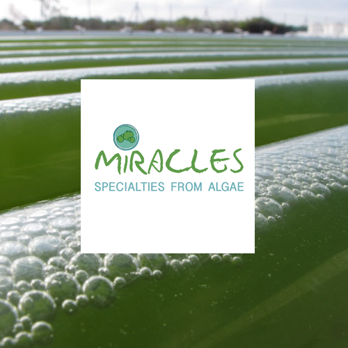 MIRACLES: Multi-product Integrated bioRefinery of Algae: from Carbon dioxide and Light Energy to high-value Specialties